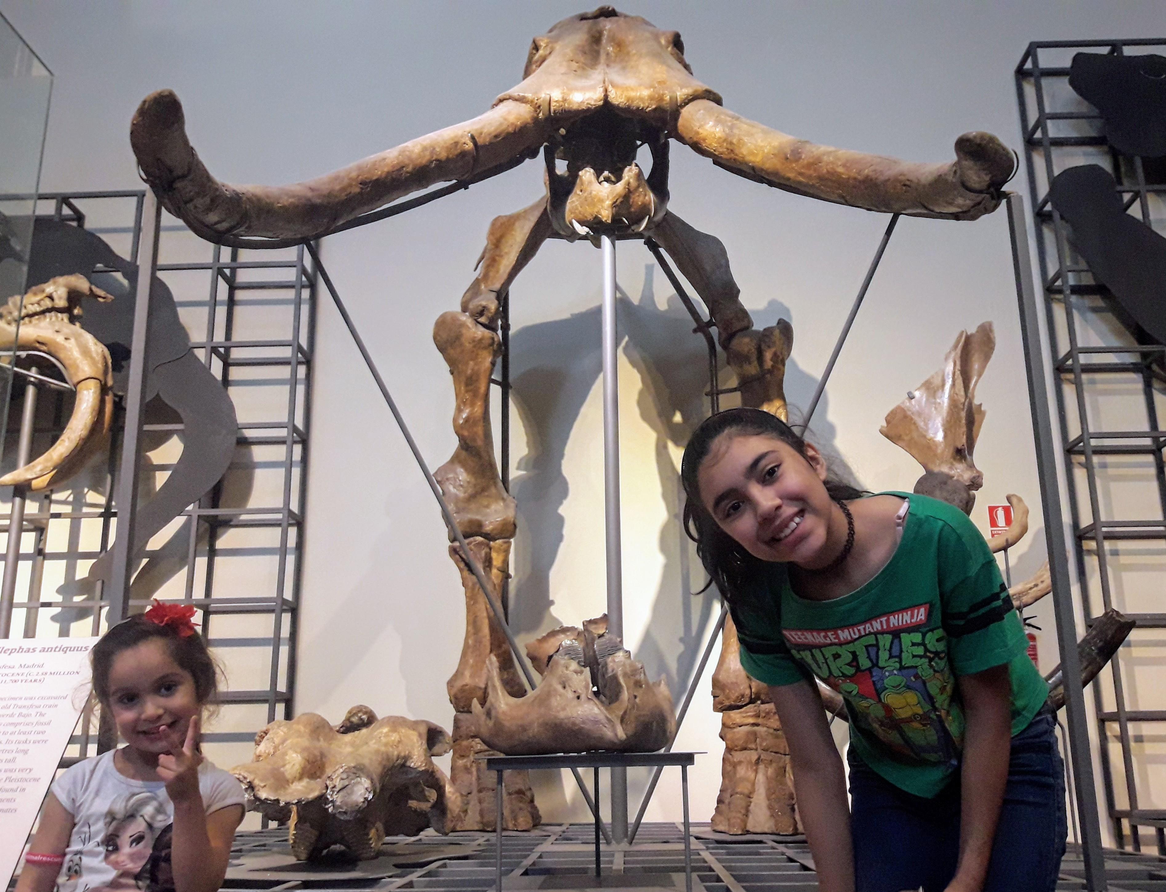 museu-ciencias-naturais-madrid