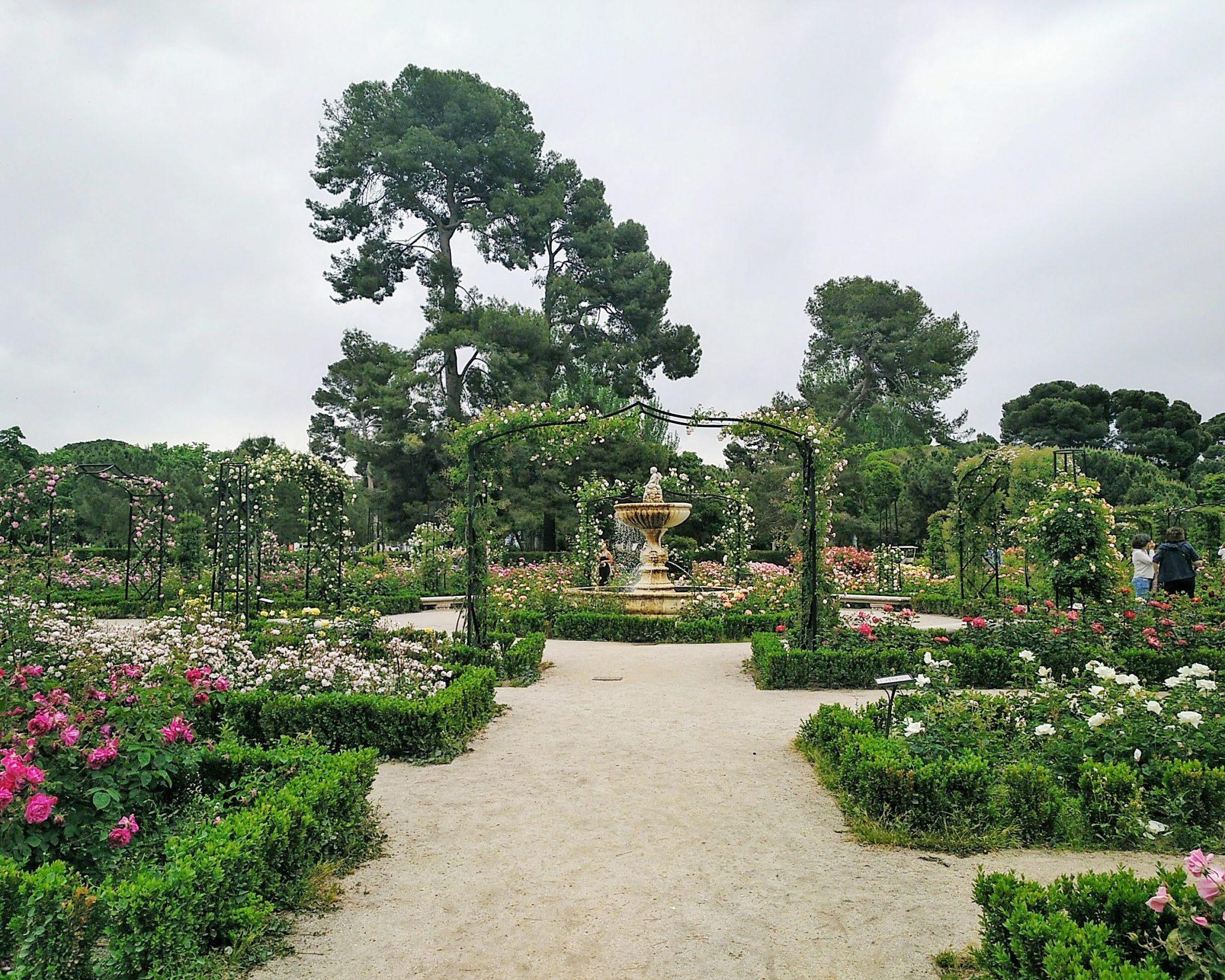 primavera-em-madrid-rosaledas