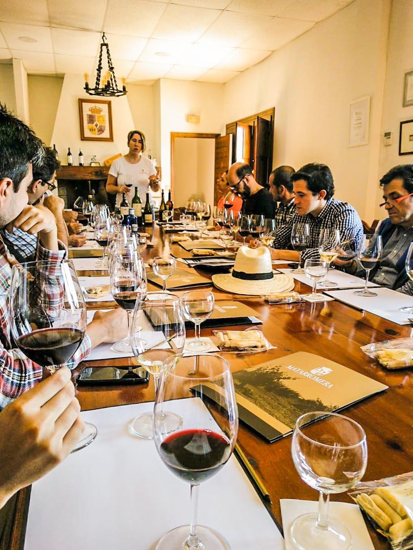 melhores-vinhos-espanha